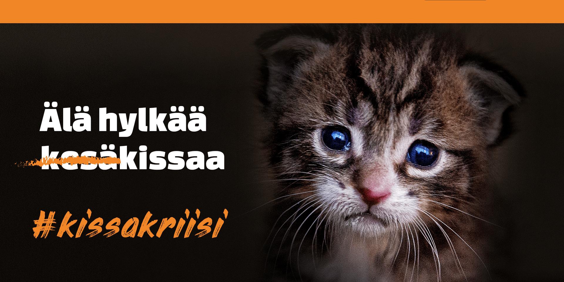 Eläinten viikko – kissakriisi